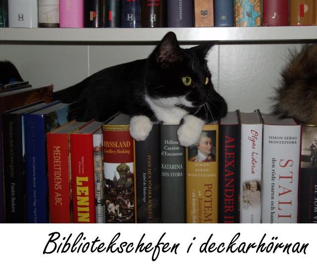 bibliotekskatten