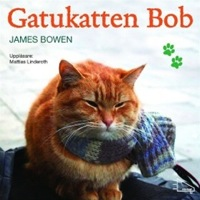 gatukatten_bob